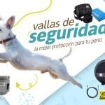 vallas-invisibles-para-perros-grandes