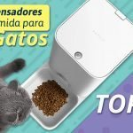 dispensador-comida-gatos-temporizador